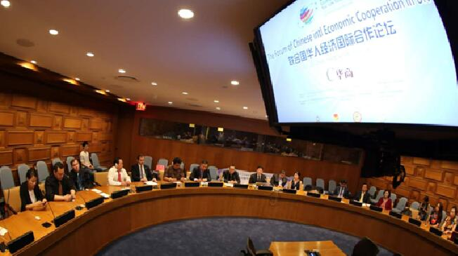 联合国NGO全球峰会-刘虹飞:一带一路助企业走出去